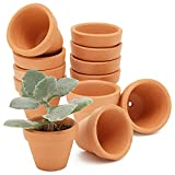 Macetas de terracota de tamaño mini, 4,8 cm, con agujero de drenaje, para vivero, cactus y plantas suculentas, 10 unidades