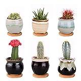 Danolt Mini Macetas de Cerámica, Suculento Maceta Cactus Flor Macetas Envase Plantas con Bandejas de Bambú Conjunto de 6