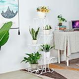 wangxike Estantería para Macetas Soporte para Plantas de Metal, Decorativa Plantas Exterior Interior Balcón Jardín con 5 Niveles - 50 x 25 x 106cm