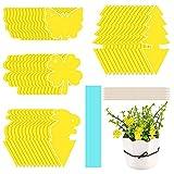 DazSpirit 52 trampas Amarillas pegajosas para Moscas, atrapa Insectos pegajosas Autoadhesivas, Control de plagas no tóxico e Impermeable para Plantas en macetas de Interior
