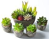 Jobary 5pcs Plantas Suculentas Artificiales Falso Plantas Decorativas Suculentas,Ideal para el Hogar, Oficina y Decoración al aire libre Falso Plantas