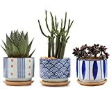 T4U 7CM Macetas para Cactus de Cerámica con Plato de Paquete de 3, Pequeña Maceteros Pequeños para Suculento Plantas Casa y Jardin Boda Decorativos Interior