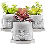 BenHill Juego de macetas | 3 macetas con un plato cada una | ideal para pequeñas plantas, suculentas y cactus | Maceta de hormigón con plato y orificio de drenaje