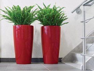 macetas rojas